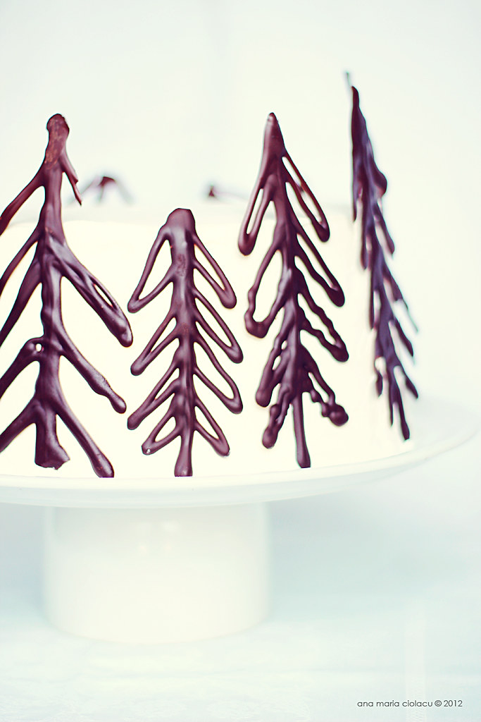 Raspberry Black Forest Cake 8
