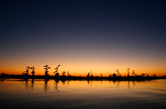 Sunset on Lake Maurepas photo by Lana Gramlich