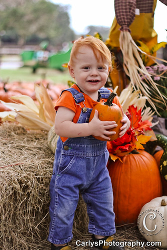 PUMPKIN PATCH - OCT 2012-13.jpg