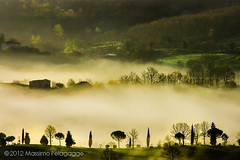 Brume photo by Massimo Pelagagge