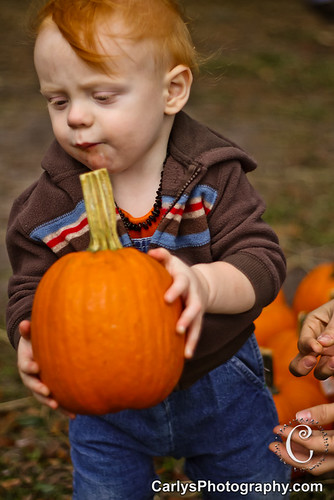 PUMPKIN PATCH - OCT 2012-35.jpg