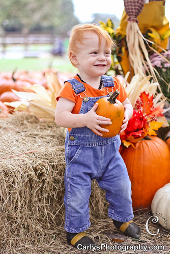 PUMPKIN PATCH - OCT 2012-14.jpg