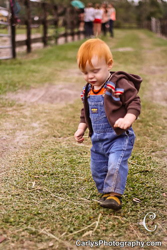 PUMPKIN PATCH - OCT 2012-26.jpg