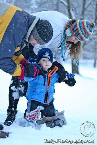 Kyton playing in the snow-1.jpg