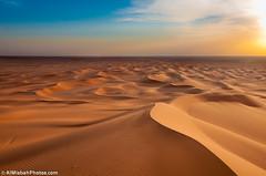 Golden Desert photo by Najim J. Almisbah