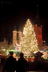 christmas tree Halle/Saale photo by MR-Fotografie