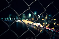 Fenced In photo by Denn-Ice