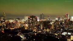 Sendai View photo by watakkk