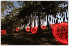 Orb Woods photo by seb a.k.a. panq