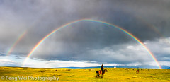 Rainbow & Rider photo by Feng Wei Photography