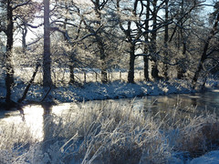 Winter solitude photo by Lancashire Lass ...... :) :) :)