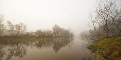 Foggy River Lagan 5 photo by GQ Gallery