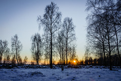 Winter sunset photo by Fredde Nilsson