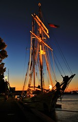 Tall ships #1 photo by robynbrody