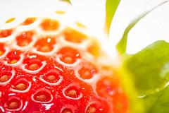 Erdbeerfieber! 1/4 photo by Skley