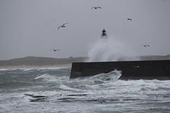 Fraserburgh Lighthouse under attack photo by Duncan Tait