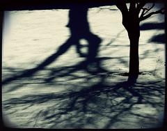 ... photo by Rino Alessandrini