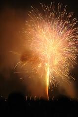 fireworks of Eastern Tokyo 02