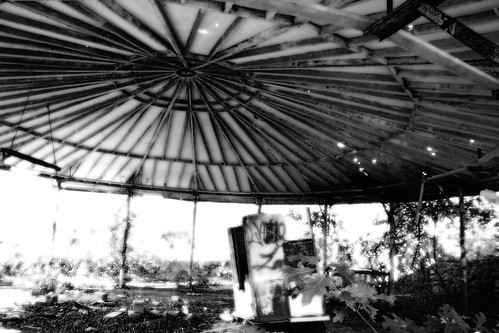 carousel, black and white