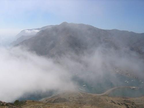 fog shrouded cat bay
