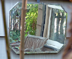 11 garden reflection