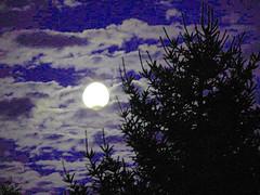 Blue moon photo by Vaeltaja