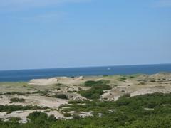 Province Lands Dunes