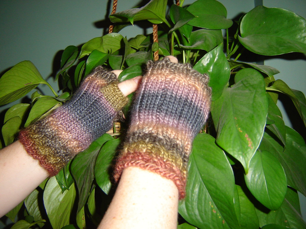 Fetching Fingerless mittens