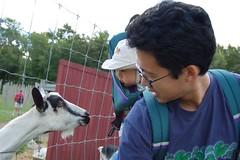 Hi Mr. Goat