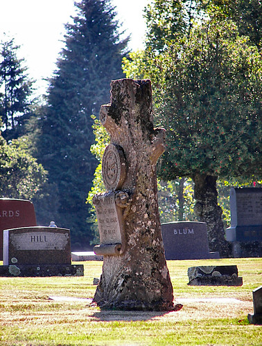 Tree Stump Marker in Stayton Oregon