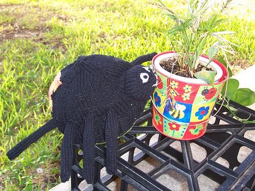 spider con plant