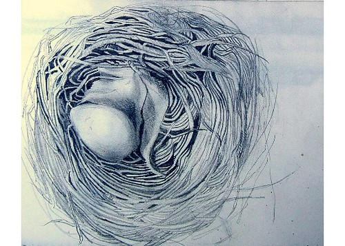 paintings of birds nests. ird nest
