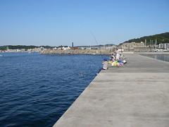 葉山漁港にて