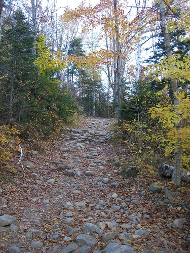 On the Tuckerman Ravine Trail
