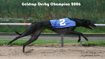 QL9T5345_Geldrop_Derby_Champion_2006_400