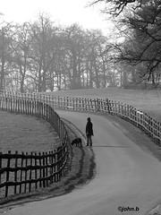 Walking-the-dog photo by johnb/Derbys/UK.