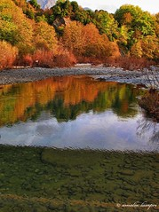 At the banks of the river Arachthos photo by amalia lam