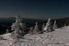 Moonlight and Snow on Roan Mountain photo by R. Keith Clontz