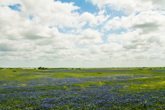 Texas Wide photo by TPorter2006