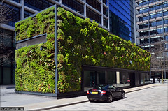 New Street Square / green wall photo by George Rex