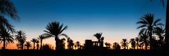 Palmeraie de Skoura, Maroc 2013