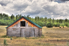 Old Woodland Cabin photo by photoaz