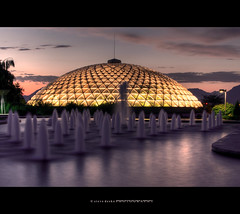 Bloedel Conservatory photo by Steve Desko