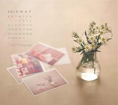 MAY Calendar photo by Faisal | Photography