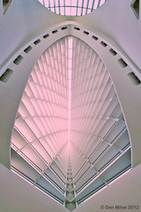 Windhover Hall Ceiling photo by Dan Mihai