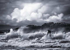 Surf's up! photo by Digital Webb
