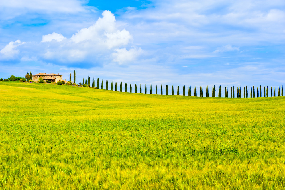 Living the Dream in Tuscany photo by Allard Schager