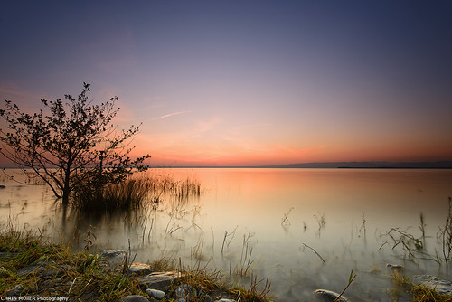 Horn Bodenseestimmung photo by Chris Mueller Photography