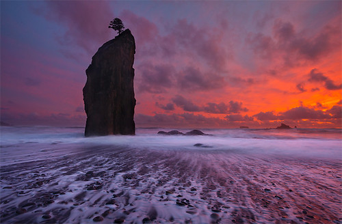 Rialto Beach - Forks Olympic National Park, Washington photo by Will Shieh