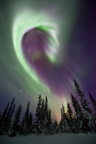 Aurora Borealis, Sweden photo by antonyspencer
